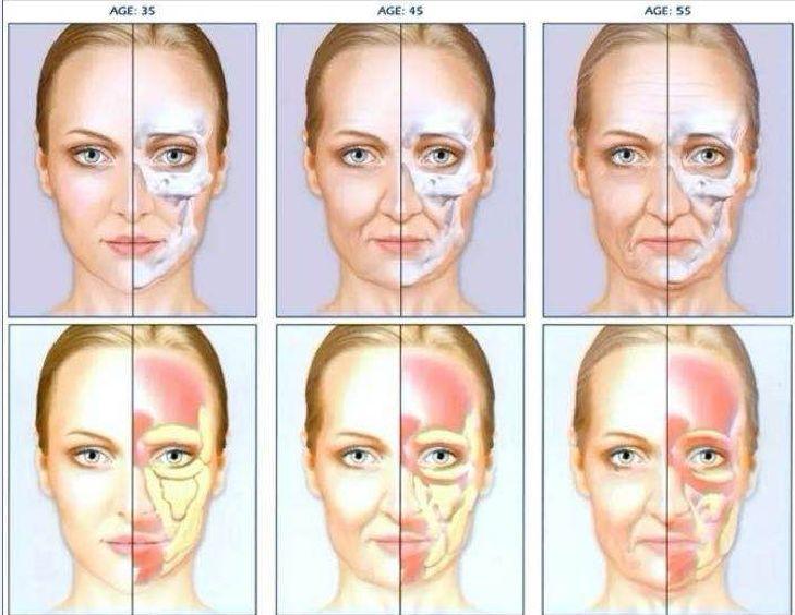 徒手瘦脸按摩:每天10分钟轻压揉按,打造立体小V脸,一按就有效-第13张图片-爱课啦