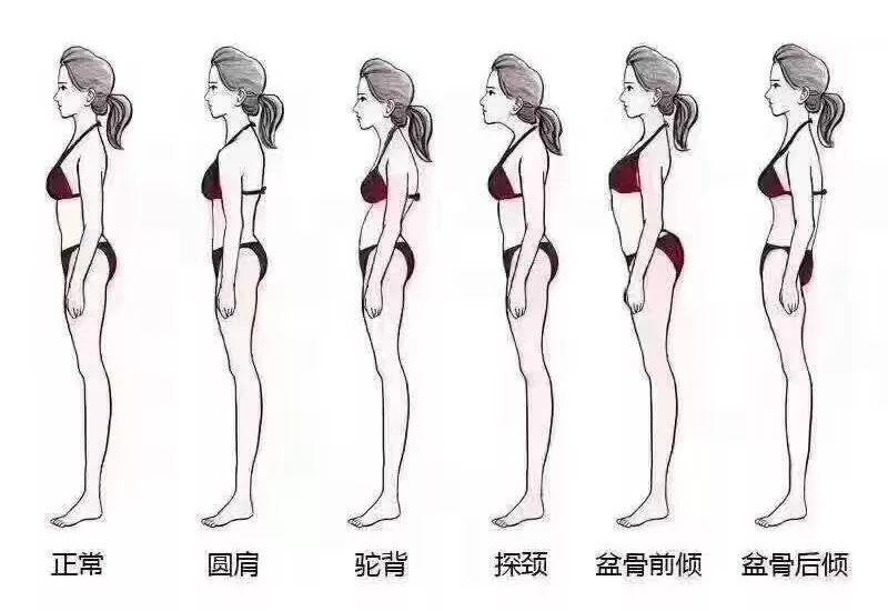 10节速瘦瑜伽:360°精雕体态,让你瘦得轻盈有气质!-第11张图片-爱课啦